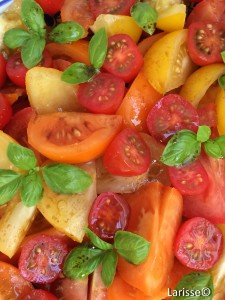Larisse_Dutch Specials_tomatensalade_©